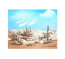 Sand Hills Photographic Print