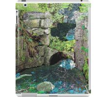 Spillway at the Old Mill iPad Case/Skin