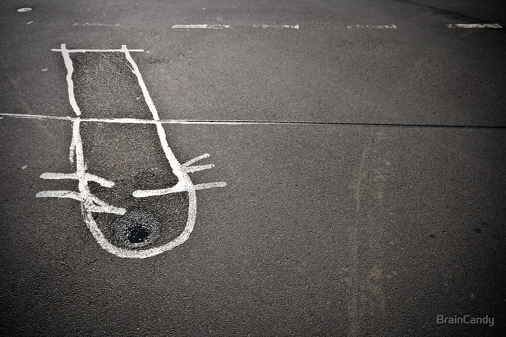 a wet-eyed australian road kitten by BrainCandy