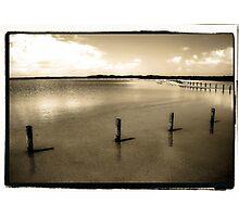 Four Sticks Photographic Print