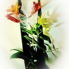 Featherlight by Richard Hamilton-Veal