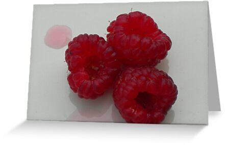 raspberries by Matte Downey