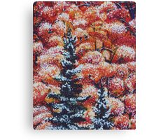 Harmony Between Fall and Winter Canvas Print