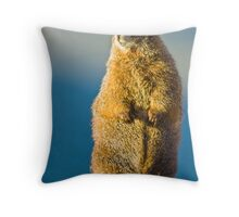 Golden Marmot Throw Pillow