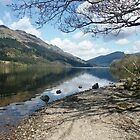 Another Loch Eck by jackitec