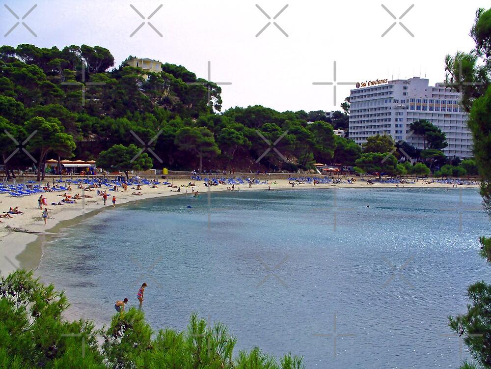 Galdana Beach by Tom Gomez