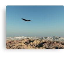Flying High Canvas Print