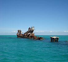 Shipwreck  by Of Land & Ocean - Samantha Goode