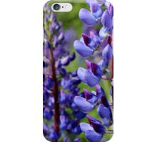 Wild Lupins III iPhone Case/Skin