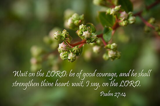 Wait on the Lord by Jonicool