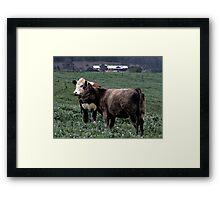 Ferguson Valley Rural Scene Framed Print