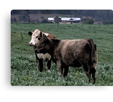 Ferguson Valley Rural Scene Canvas Print