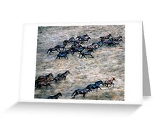THE BRUMBY RUN Greeting Card