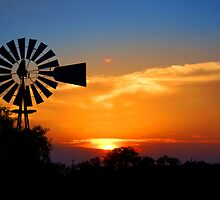 Windmill at Sunset by photosbytammy