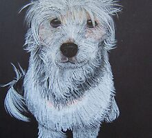Chingraph Dog on Black by Kate Trewin