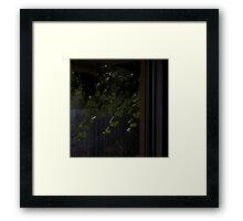 Vines Outside Framed Print