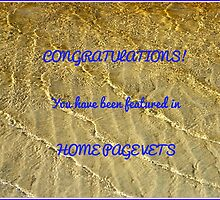 Home Page Vets Feature Banner by MidnightMelody
