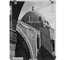 arches of history iPad Case/Skin