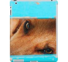 sleepy stray dog iPad Case/Skin