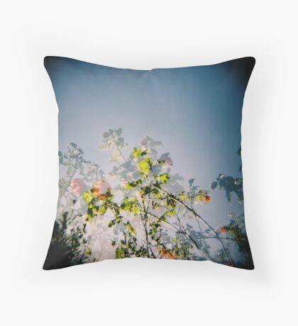 Lantern bush Throw Pillow