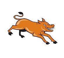Angry Pig Jumping Attacking Cartoon by patrimonio