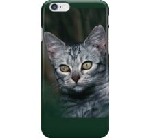 """Chat - Cat """" Peluche """" 01 (c)(h) ) by Olao-Olavia / Okaio Créations 300mm f.2.8 canon eos 5 1989  iPhone Case/Skin"""