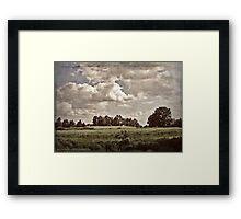 Vintage landscape Framed Print