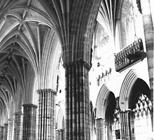 Exeter Cathedral - Columns  by Peter Sandilands