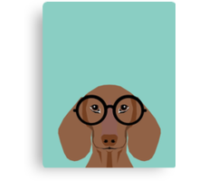 Remy - Fashion Glasses Doxie Dashcund Hipster Dog  Canvas Print