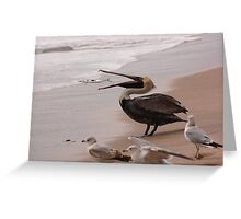 Pelican Lunch Greeting Card