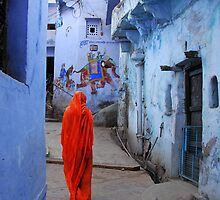 THE COLORS OF RAJASTHAN 2 by Michael Sheridan