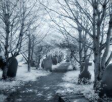 Graveyard Walk by Ann Garrett