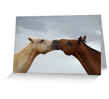 Arched horses Greeting Card