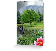 Cloudy Afternoon On The Lily Pond Greeting Card