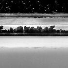 Frozen Lake by Kathie Nichols