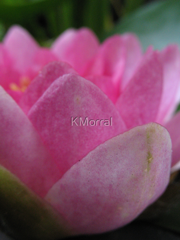Layers by KMorral