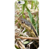Snake peeking out of the tall grass and sticks - Wild Nature Photography by Barberelli iPhone Case/Skin