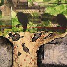 nature's playground by scott allison