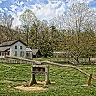 Cades Cove by Patricia Montgomery