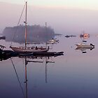 Fog, Morning, Coast of Maine by fauselr