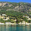 Corfu Shore by Tom Gomez