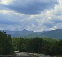 Evening shot North Carolina by spiritsfreedom