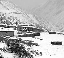 High Camp - The Himalayas - Nepal by aidan  moran