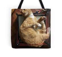 silly trapper cat wants to wrestle Tote Bag