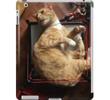 silly trapper cat wants to wrestle iPad Case/Skin