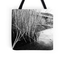 Small pool by the ocean Tote Bag