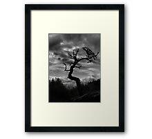 Clookshla Framed Print