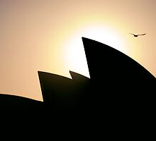 Sunrise Arch by Kelsi Doscher
