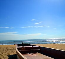 Boat by the Beach | Beaches by Hopasholic