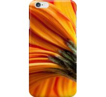 Gerbera 11 iPhone Case/Skin